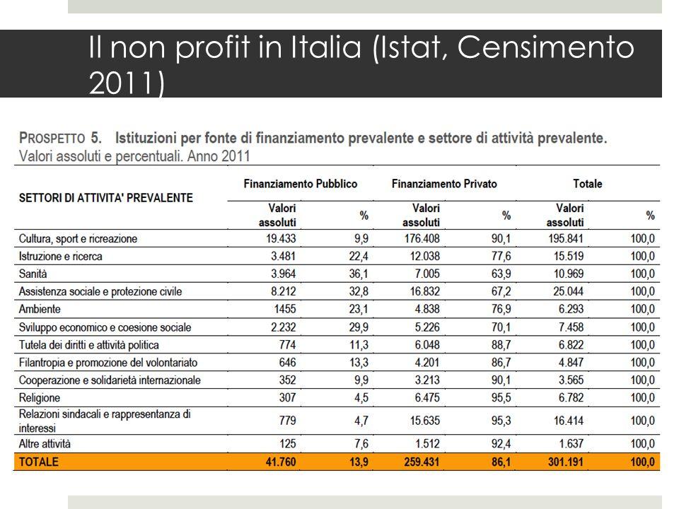 Il non profit in Italia (Istat, Censimento 2011)