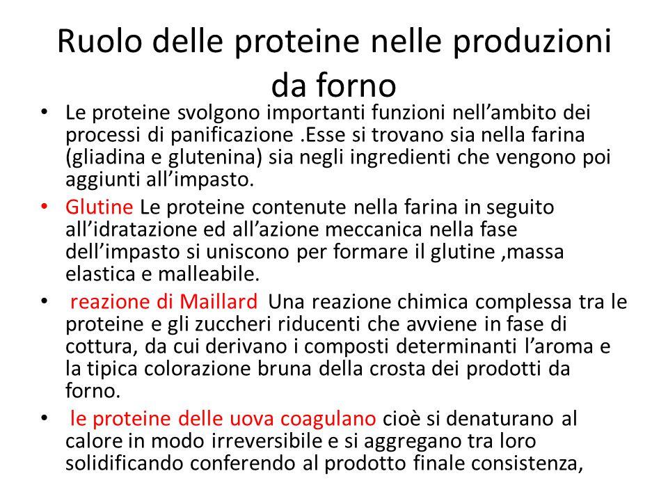 Ruolo delle proteine nelle produzioni da forno