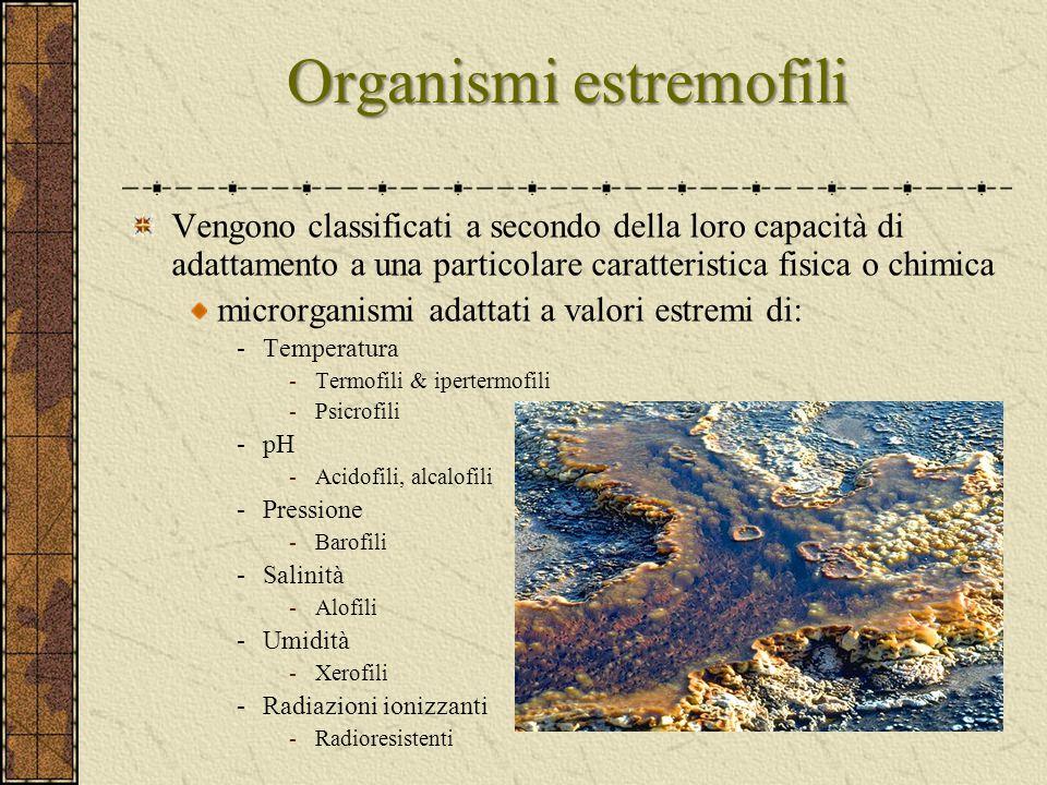 Organismi estremofili