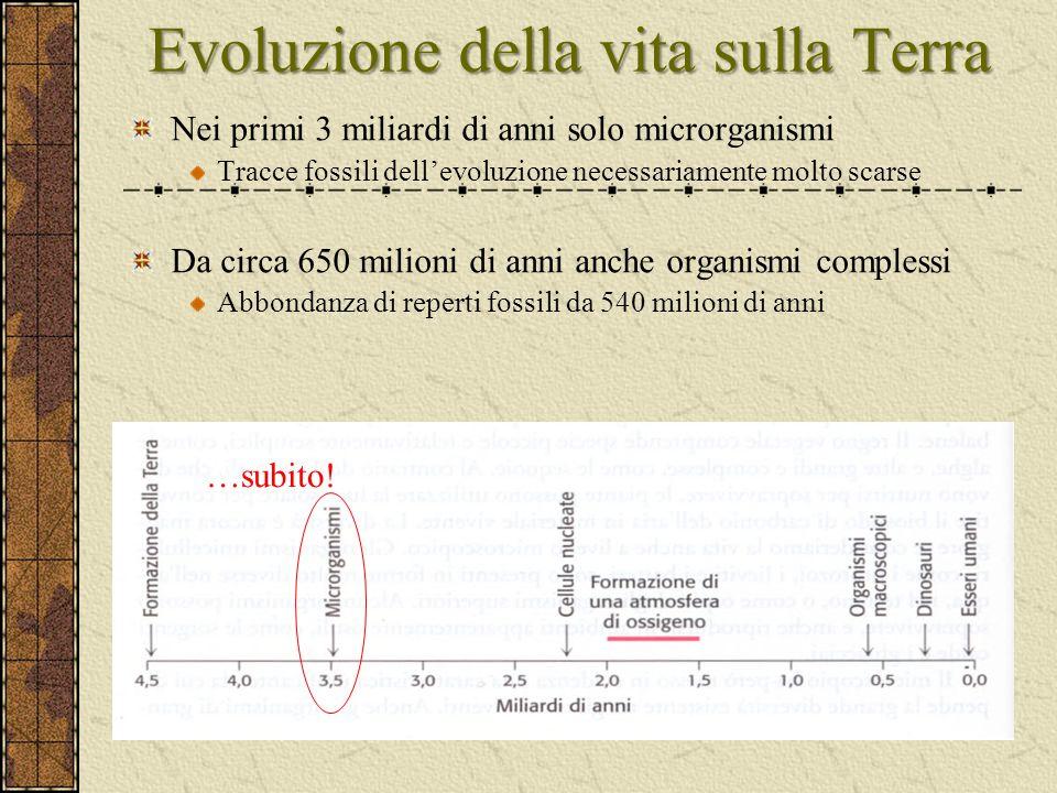 Evoluzione della vita sulla Terra