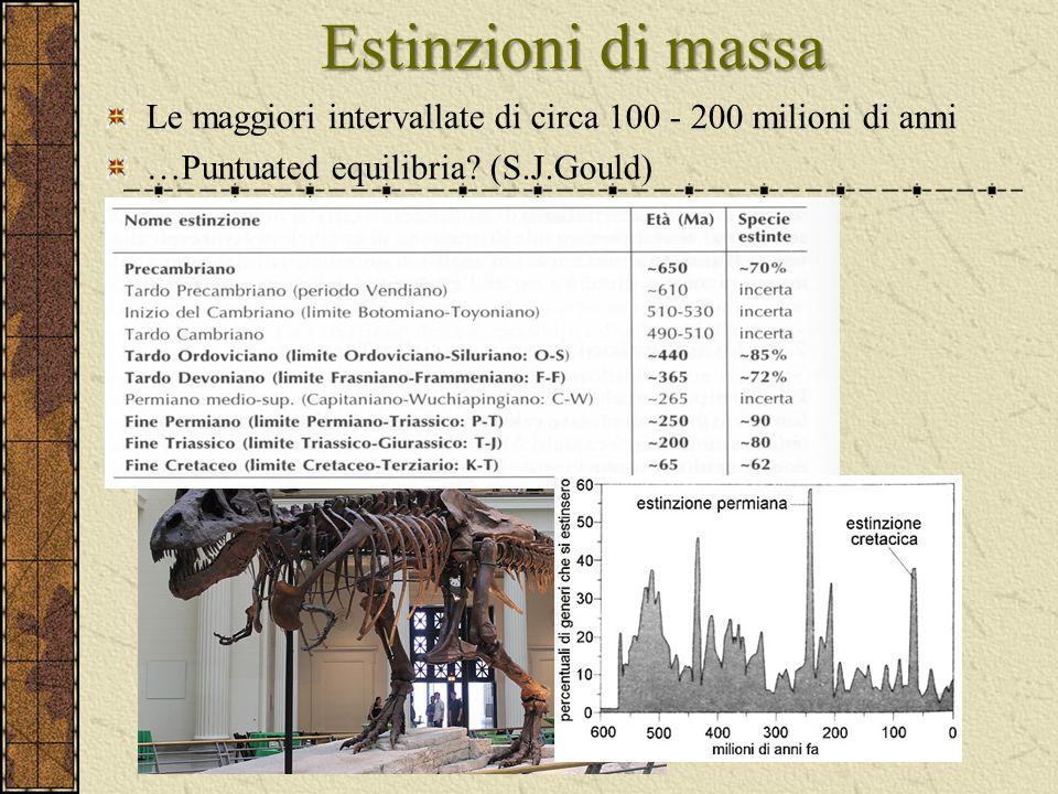Estinzioni di massa Le maggiori intervallate di circa 100 - 200 milioni di anni.