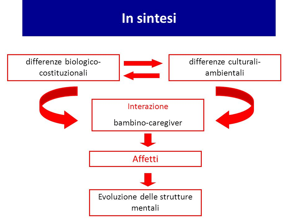 In sintesi Affetti differenze biologico-costituzionali