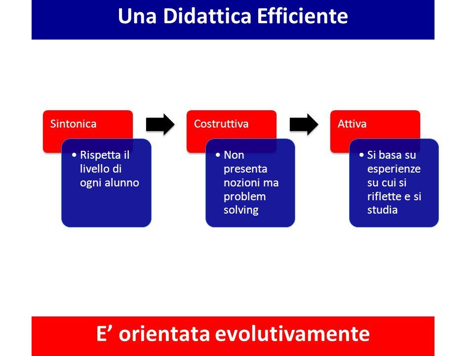 Una Didattica Efficiente E' orientata evolutivamente