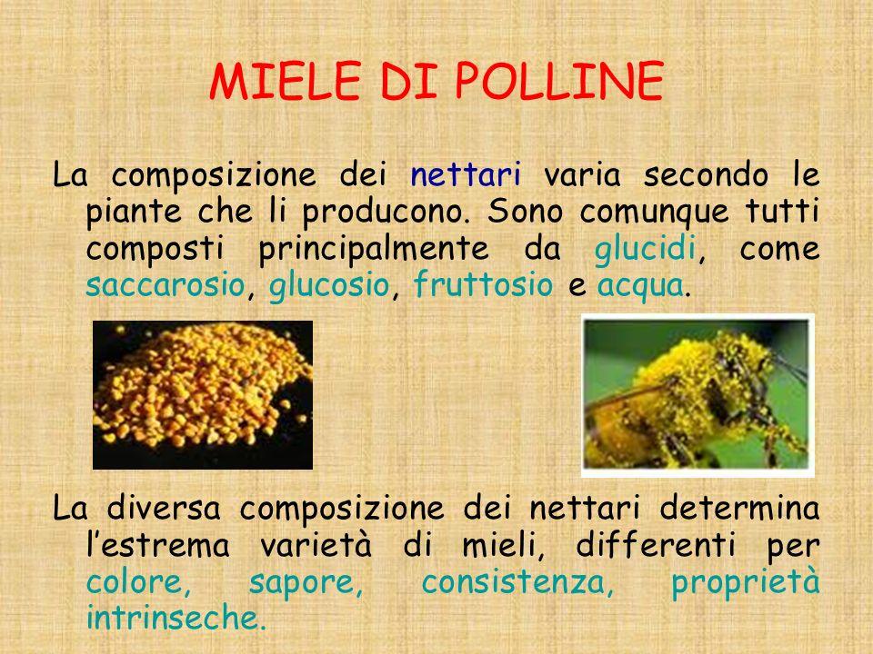 MIELE DI POLLINE