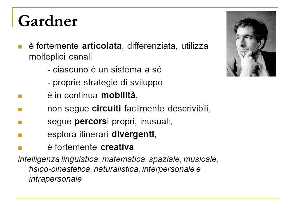 Gardner è fortemente articolata, differenziata, utilizza molteplici canali. - ciascuno è un sistema a sé.