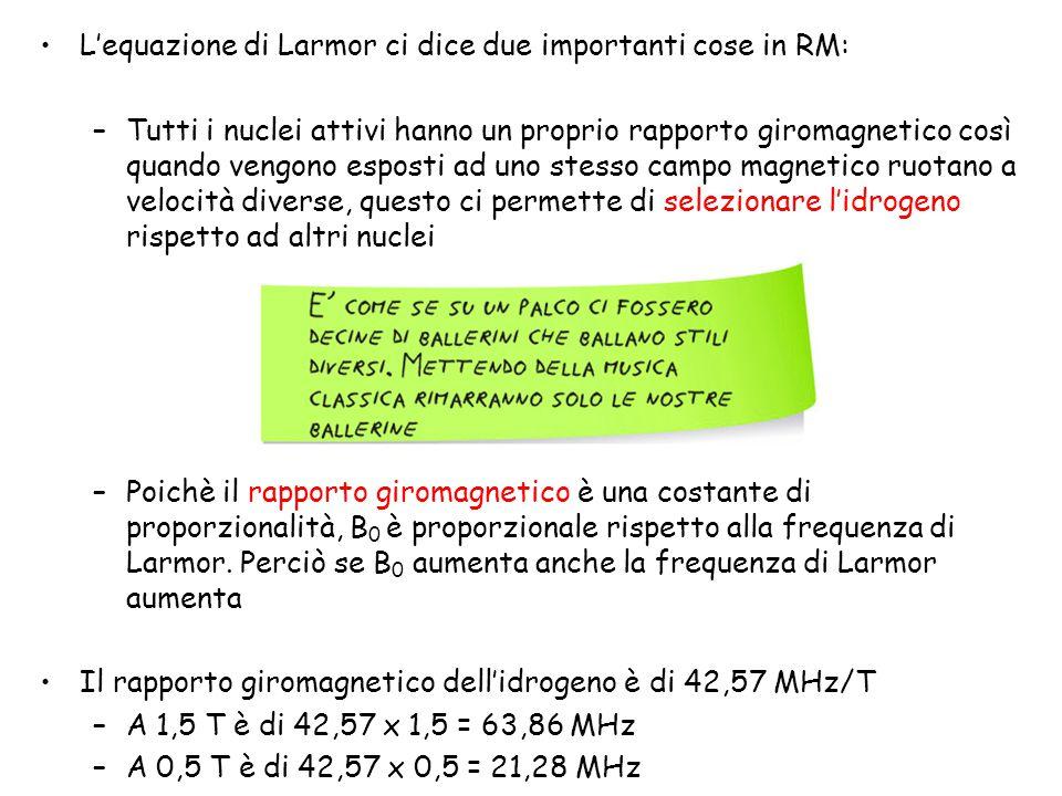 L'equazione di Larmor ci dice due importanti cose in RM: