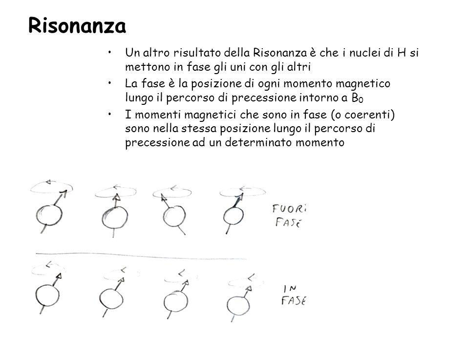 Risonanza Un altro risultato della Risonanza è che i nuclei di H si mettono in fase gli uni con gli altri.
