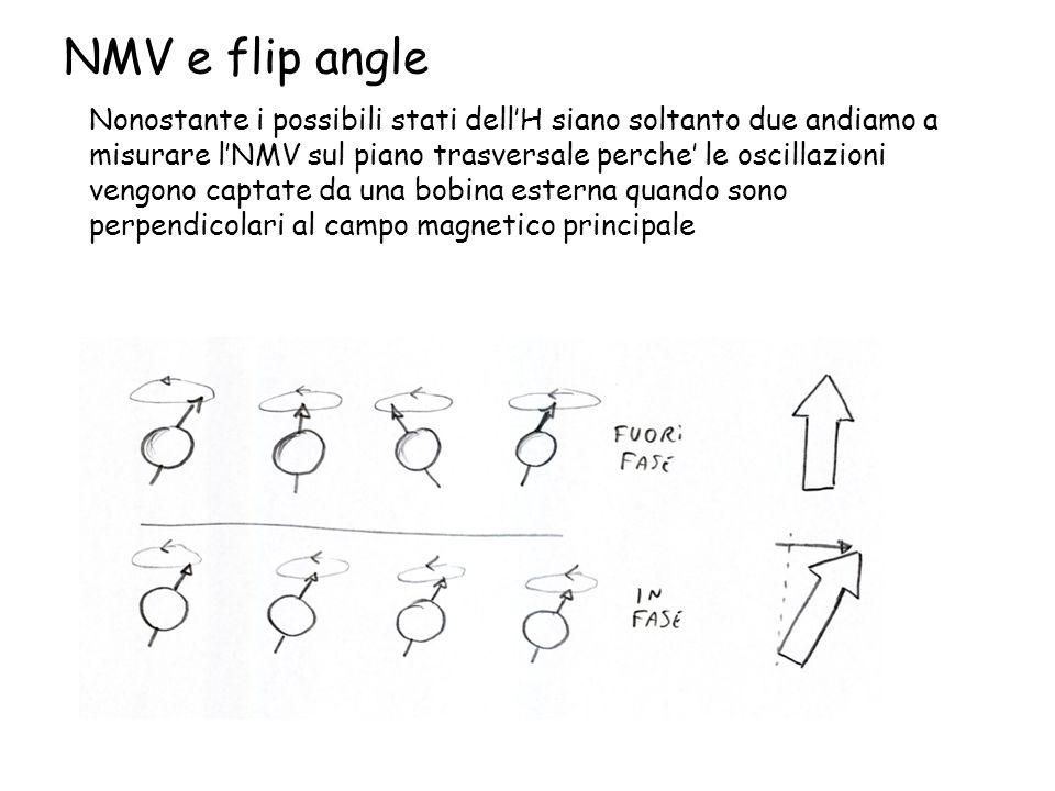 NMV e flip angle