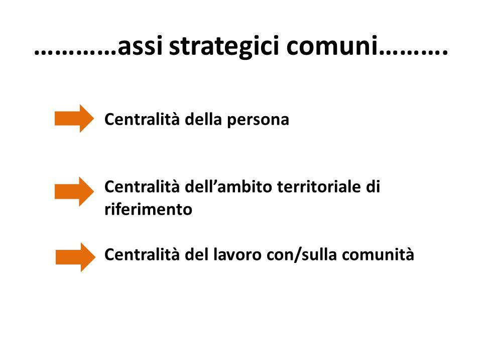 …………assi strategici comuni……….