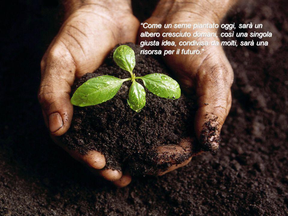 Come un seme piantato oggi, sarà un albero cresciuto domani, così una singola giusta idea, condivisa da molti, sarà una risorsa per il futuro.