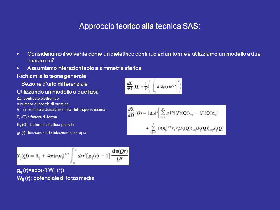 Approccio teorico alla tecnica SAS: