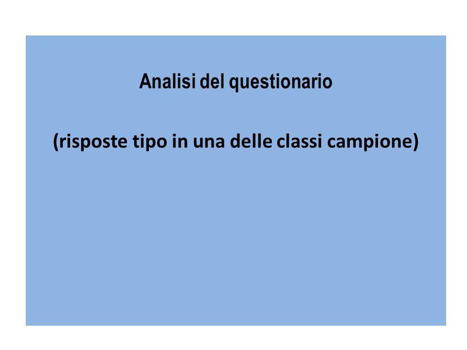 Analisi del questionario (risposte tipo in una delle classi campione)