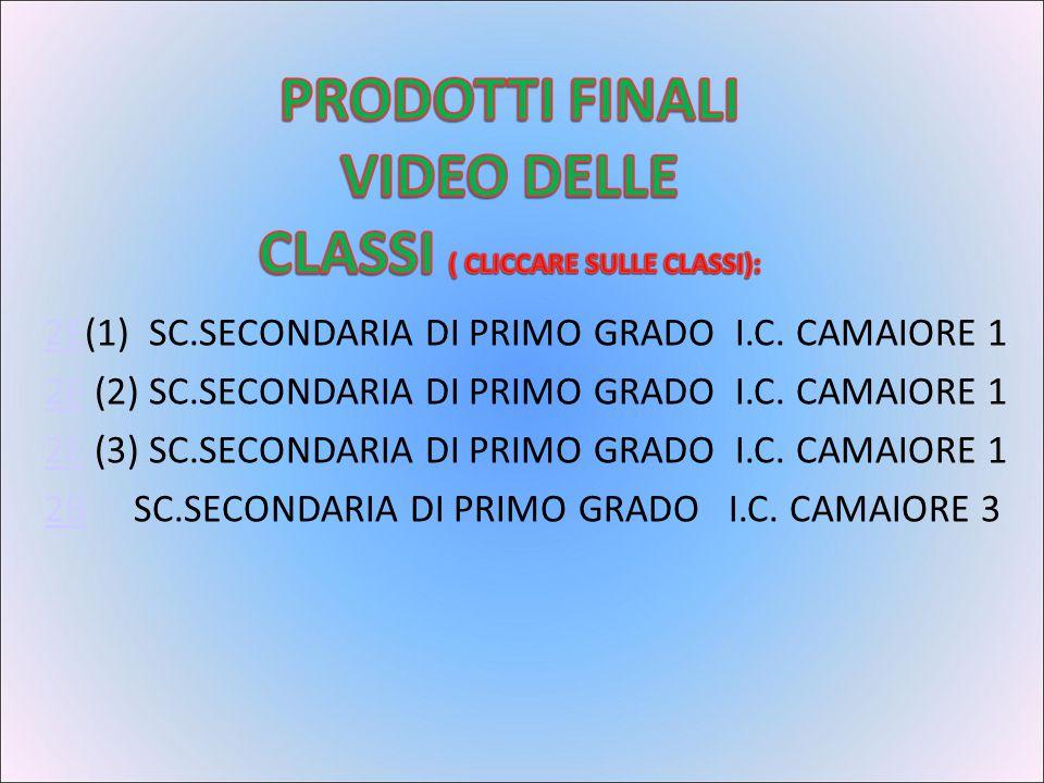 2E(1) SC.SECONDARIA DI PRIMO GRADO I.C. CAMAIORE 1