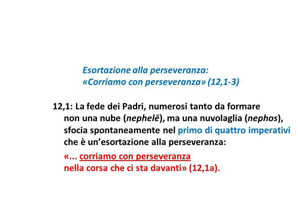 «Corriamo con perseveranza» (12,1-3)