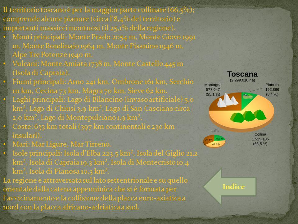 Il territorio toscano è per la maggior parte collinare (66,5%); comprende alcune pianure (circa l 8,4% del territorio) e importanti massicci montuosi (il 25,1% della regione).