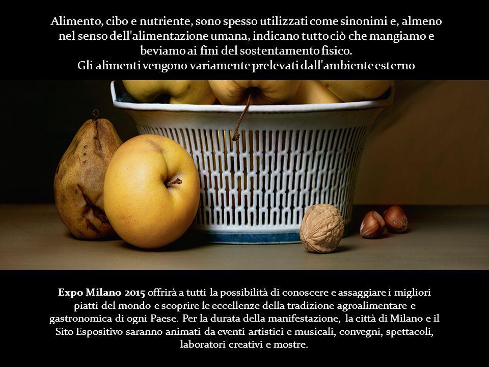 Gli alimenti vengono variamente prelevati dall ambiente esterno