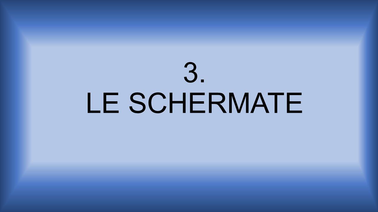3. LE SCHERMATE
