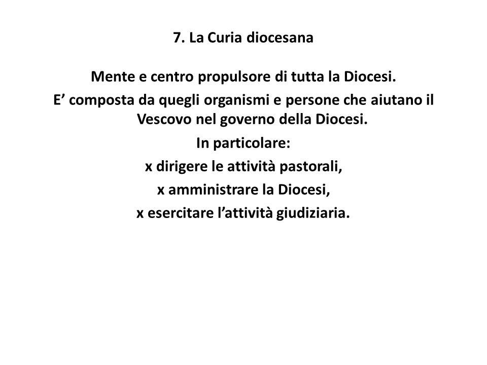7. La Curia diocesana