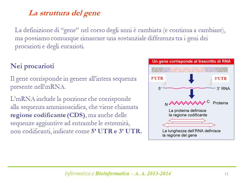 La struttura del gene Nei procarioti