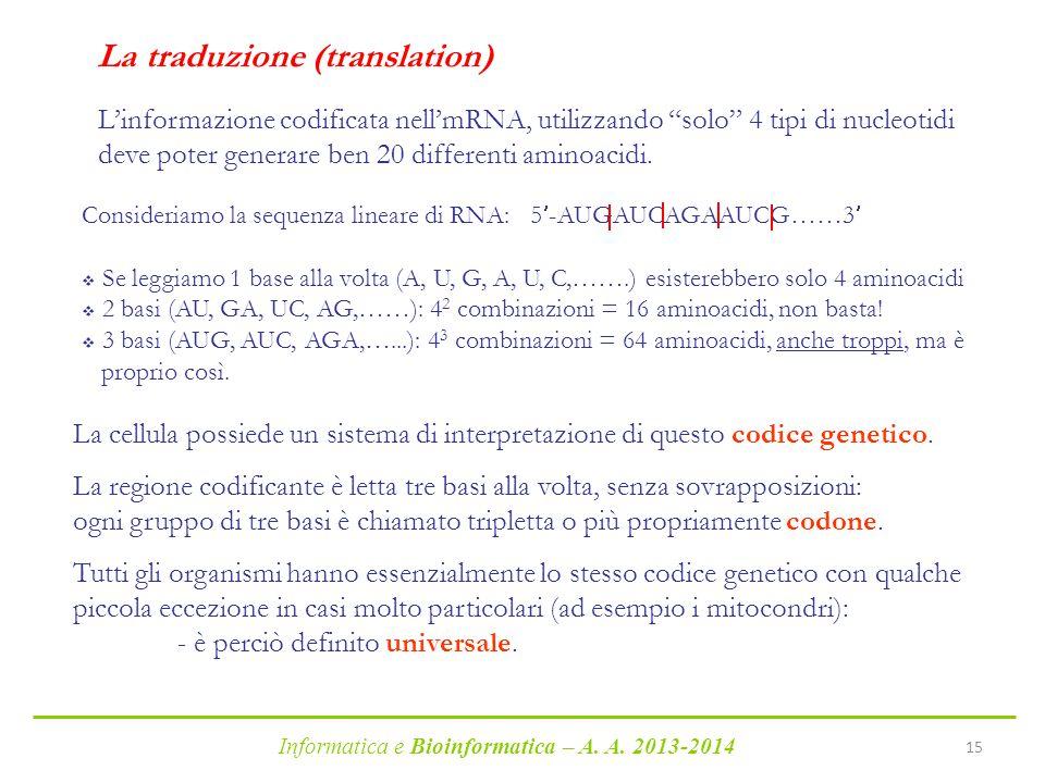 La traduzione (translation)