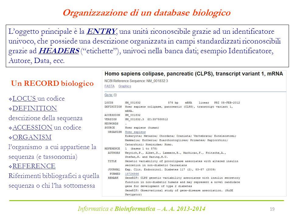 Organizzazione di un database biologico