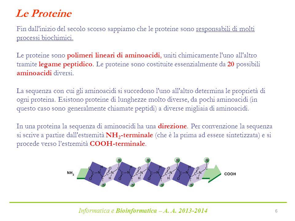 Le Proteine Fin dall inizio del secolo scorso sappiamo che le proteine sono responsabili di molti processi biochimici.