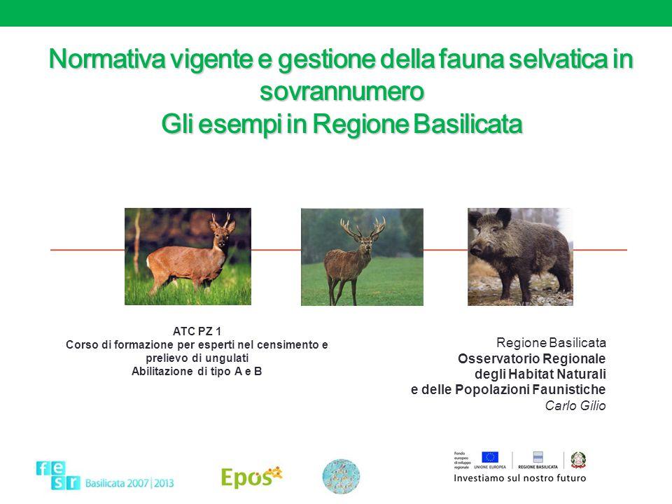 Normativa vigente e gestione della fauna selvatica in sovrannumero Gli esempi in Regione Basilicata