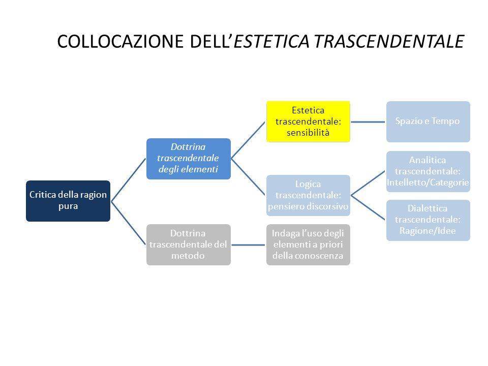 COLLOCAZIONE DELL'ESTETICA TRASCENDENTALE