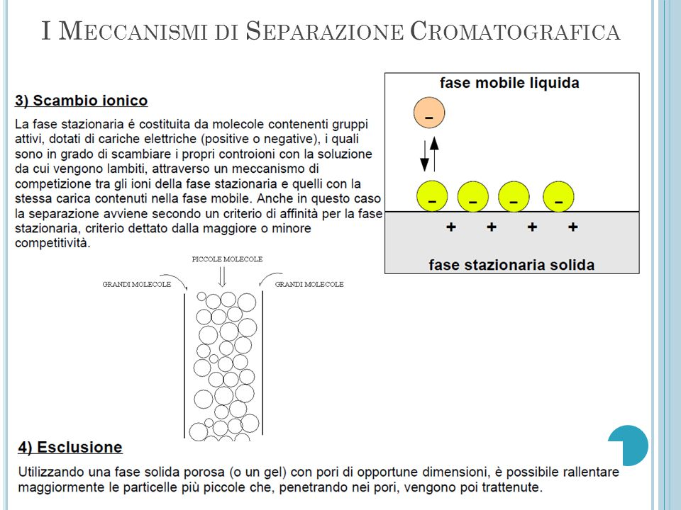 I Meccanismi di Separazione Cromatografica