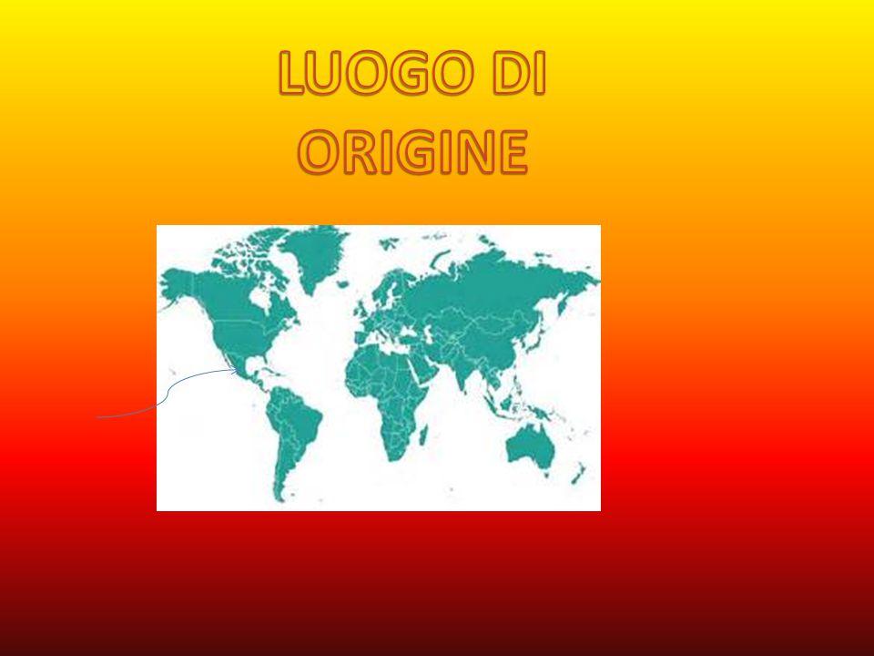 LUOGO DI ORIGINE