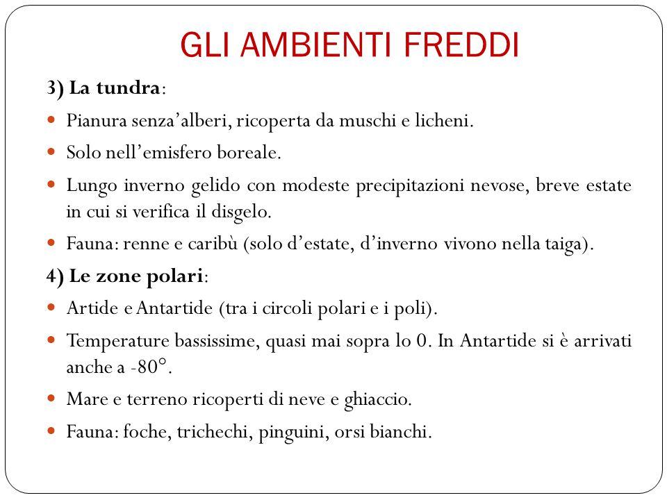 GLI AMBIENTI FREDDI 3) La tundra: