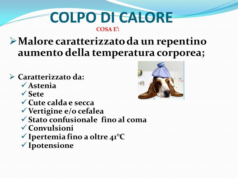 COLPO DI CALORE COSA E': Malore caratterizzato da un repentino aumento della temperatura corporea;