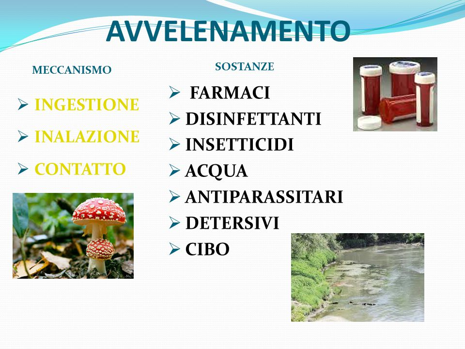 AVVELENAMENTO FARMACI DISINFETTANTI INSETTICIDI ACQUA ANTIPARASSITARI