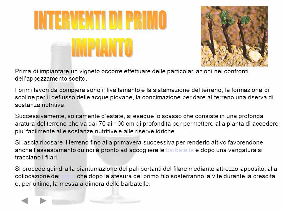 INTERVENTI DI PRIMO IMPIANTO