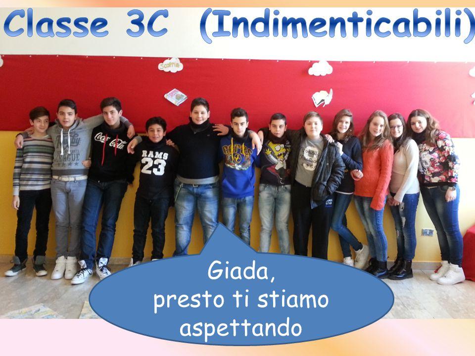 Classe 3C (Indimenticabili)