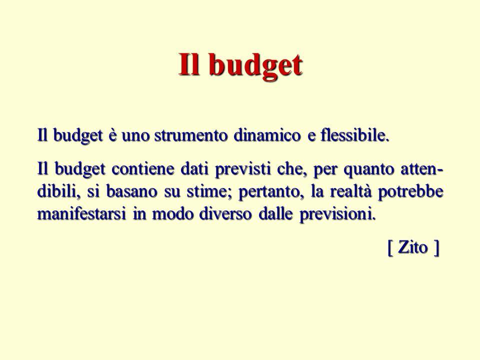 Il budget Il budget è uno strumento dinamico e flessibile.