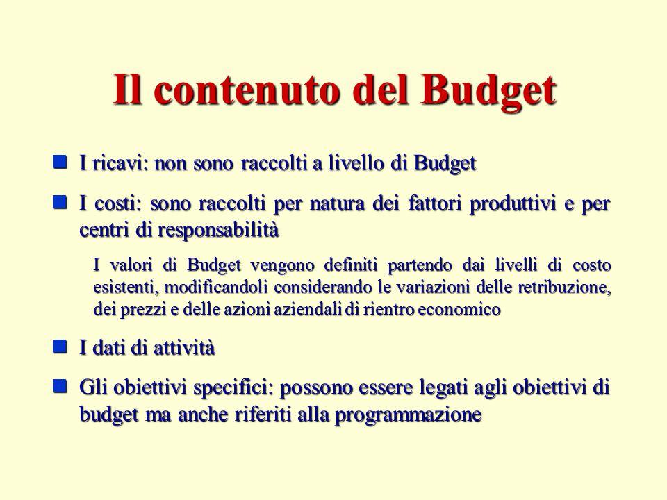 Il contenuto del Budget