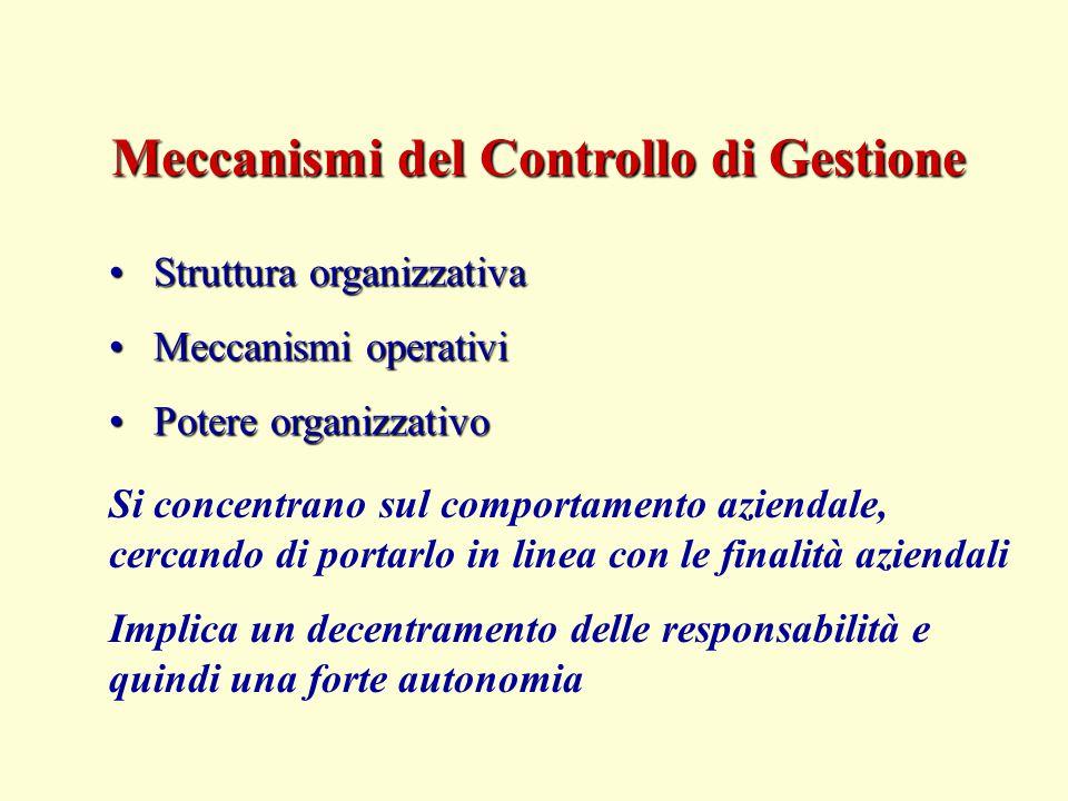 Meccanismi del Controllo di Gestione