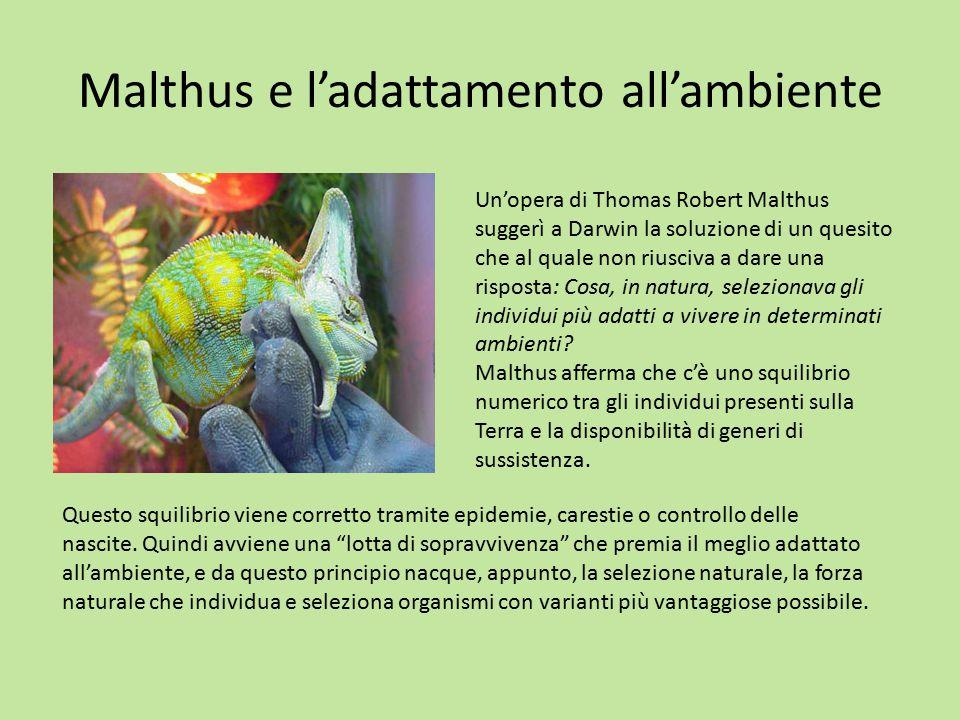 Malthus e l'adattamento all'ambiente
