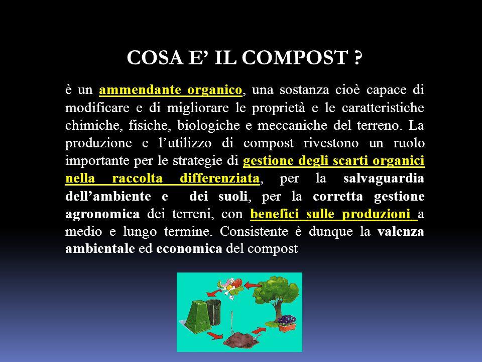 COSA E' IL COMPOST