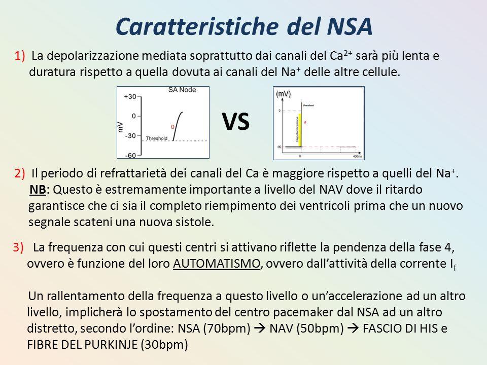 Caratteristiche del NSA