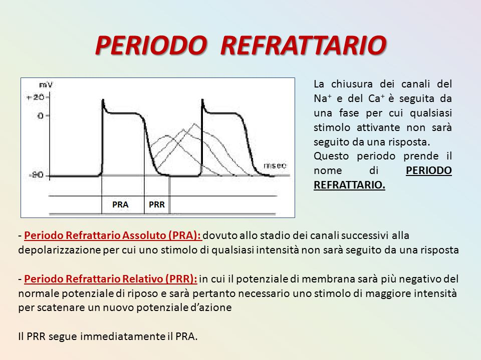 PERIODO REFRATTARIO
