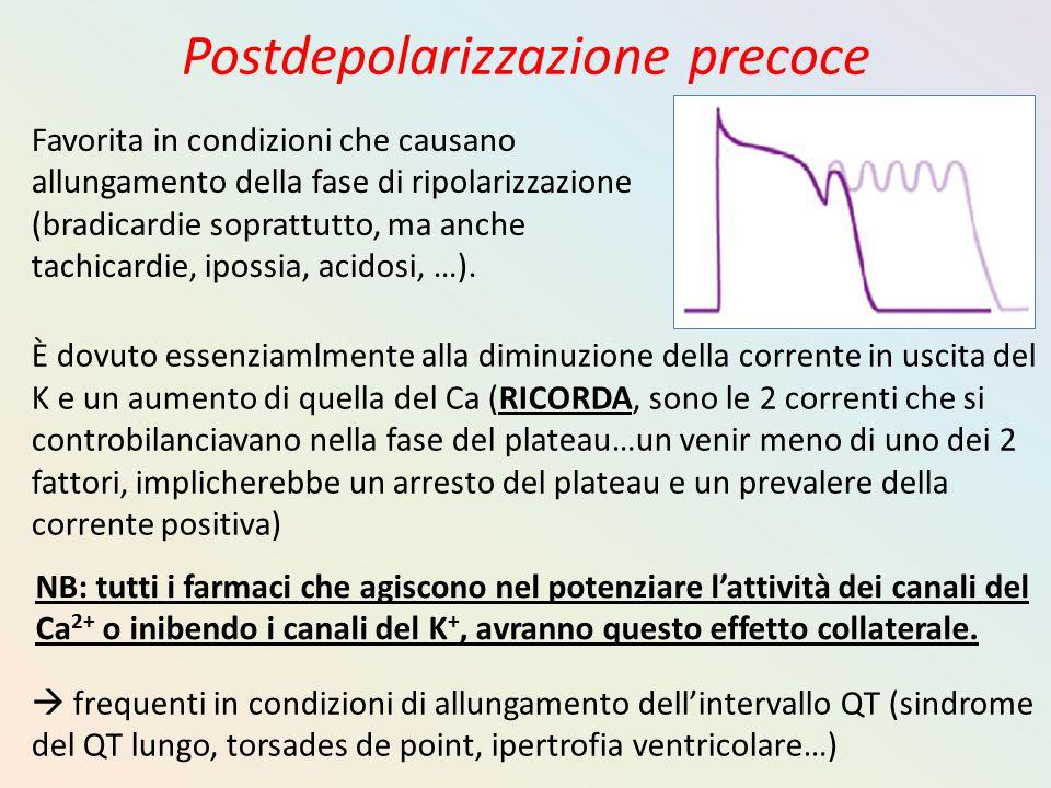 Postdepolarizzazione precoce