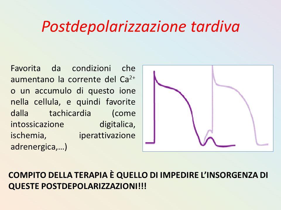 Postdepolarizzazione tardiva