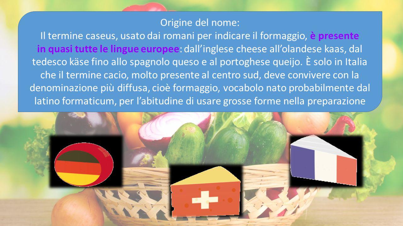 Origine del nome: Il termine caseus, usato dai romani per indicare il formaggio, è presente.
