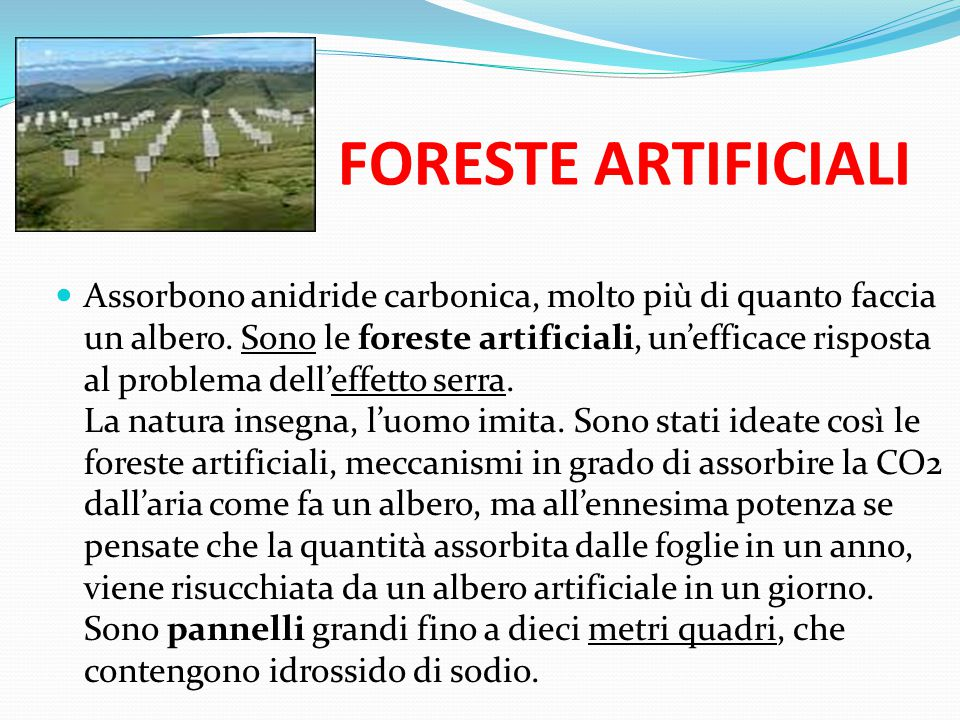 FORESTE ARTIFICIALI