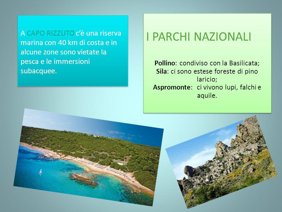 I PARCHI NAZIONALI Pollino: condiviso con la Basilicata; Sila: ci sono estese foreste di pino laricio; Aspromonte: ci vivono lupi, falchi e aquile.