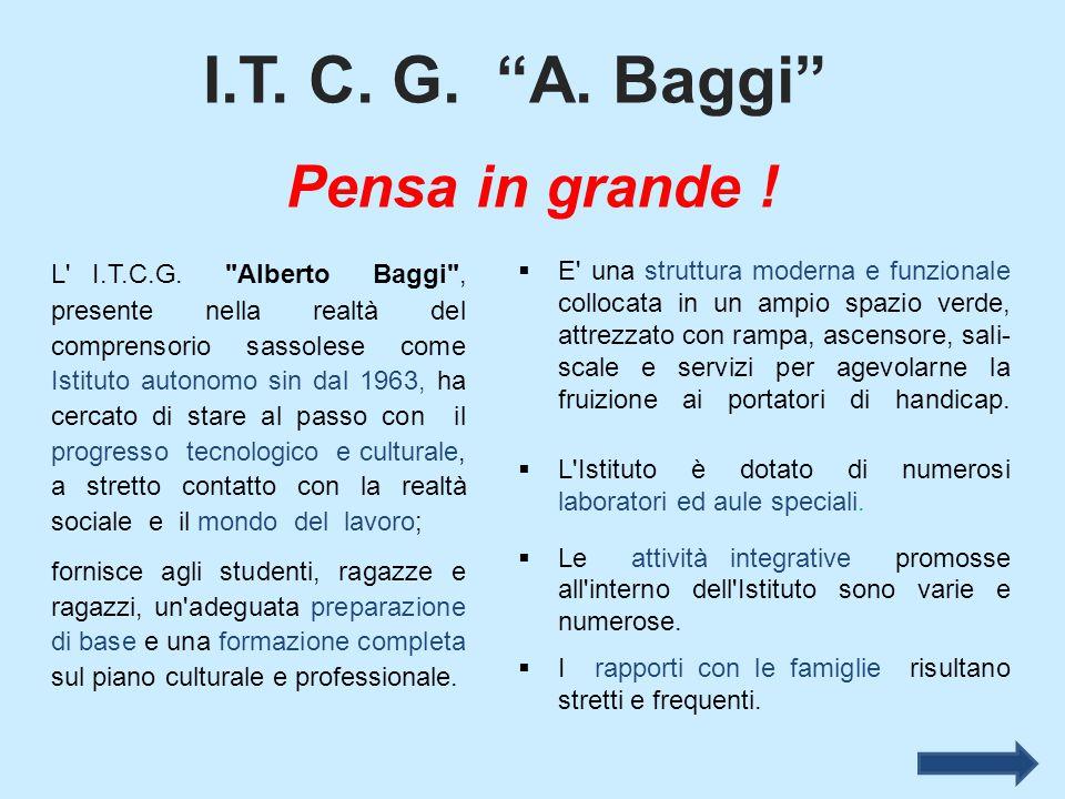I.T. C. G. A. Baggi Pensa in grande !