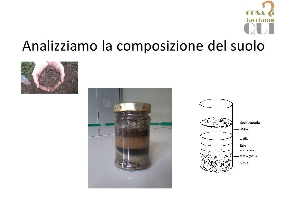 Analizziamo la composizione del suolo