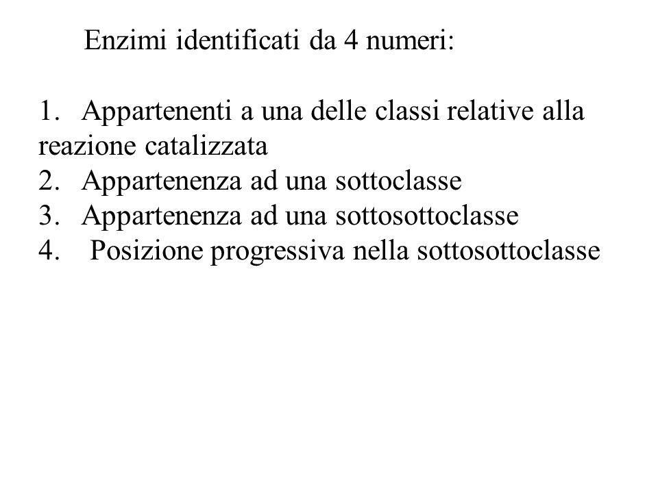 Enzimi identificati da 4 numeri: 1